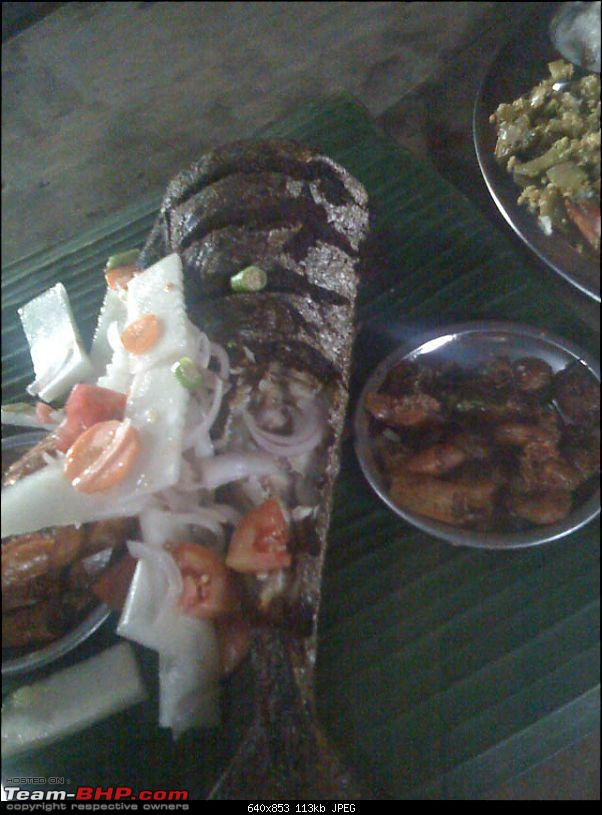 If you Love Sea Food and Can drive to Quilon (Kollam)-fish.jpg