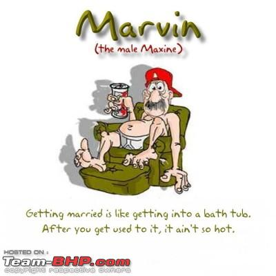 Name:  Marvin 2.jpg