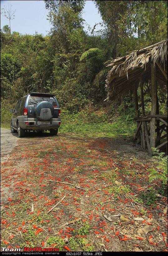 All Tata Safari Owners - Your SUV Pics here-img_7373.jpg
