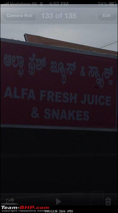 How do you stick a bell on a wall? Pics of Quirky Signs-snakes.jpg