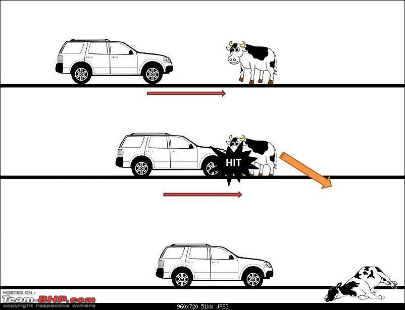 Cattle - The real menace on Indian highways-scenario1.jpg