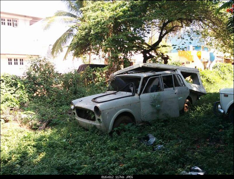 Newer Rotting Cars-1416832689288.jpg