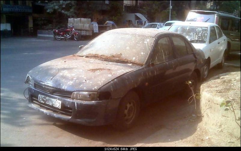 Newer Rotting Cars-1427057368599.jpg