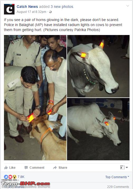 Name:  CowCapture.PNG Views: 7673 Size:  541.1 KB