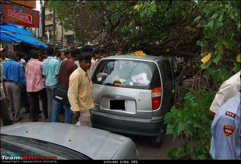 A near miss - Tree almost falls on a Santro (not my car, I was merely a bystander)-dsc_03052_thumb.jpg