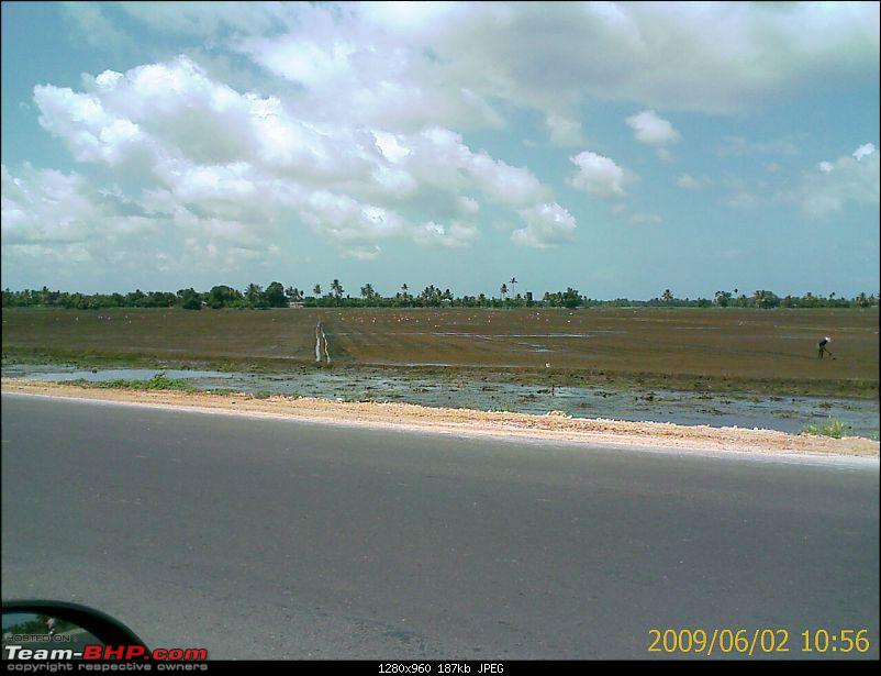 Phases of agriculture in Kuttanad-image_109.jpg