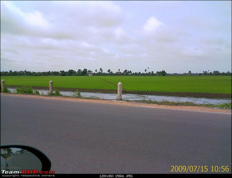 Phases of agriculture in Kuttanad-image_191.jpg