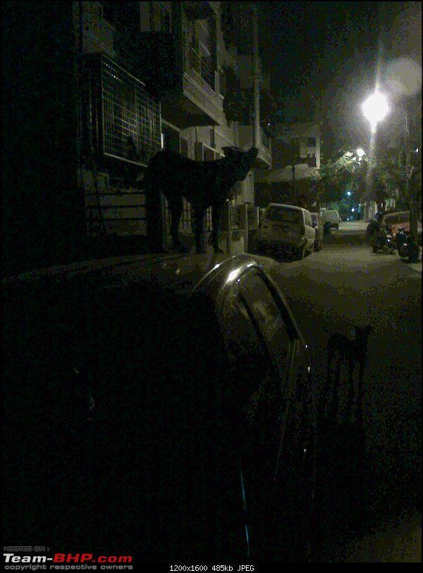 Car Vandalism!-moto_0007.jpg