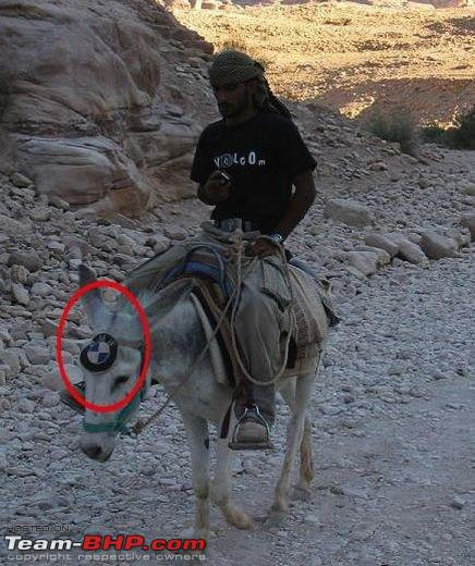 Name:  donkey_bmw.jpg