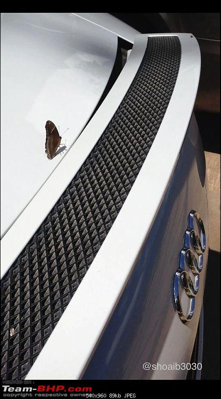 Supercars & Imports : Bangalore-butterfly-n-r8-copy.jpg