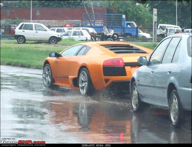 "My LP640 - ""The eagle has landed, (or in this case, the bull)""-dscf0300.jpg"