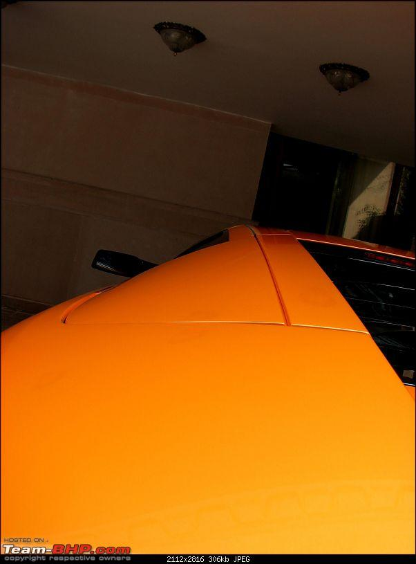 """My LP640 - """"The eagle has landed, (or in this case, the bull)""""-img_2380.jpg"""