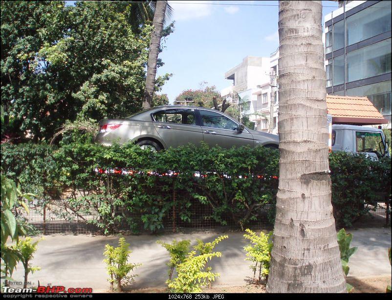Honey....I Broke The Mercedes!!!!-pb200969.jpg