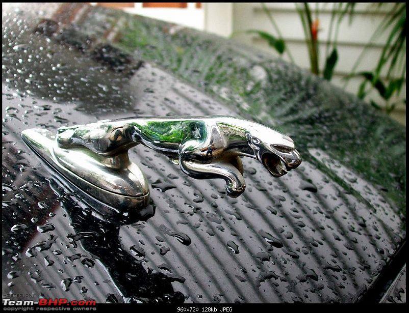 Supercars & Imports : Kerala-2-6.jpg
