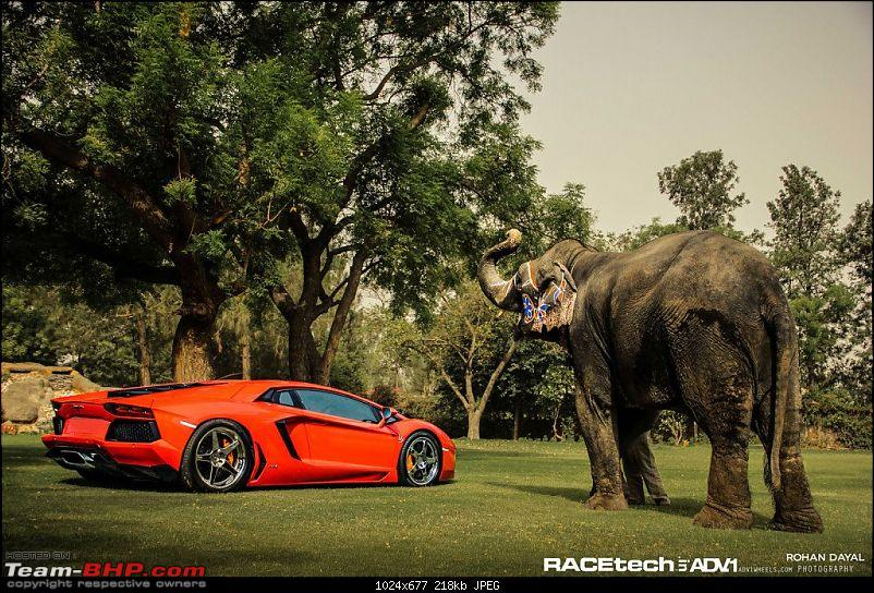 Lamborghini Aventador LP700-4 in India!-331587_395516367180069_1402629537_o.jpg
