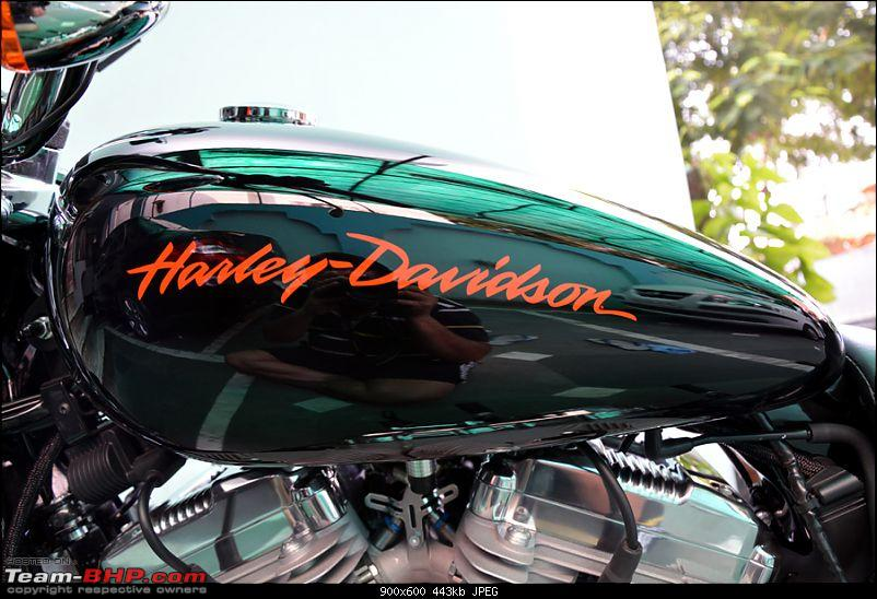 Harley Davidson Superlow XL883L - The Comprehensive Review-77_trivia_tank-left.jpg