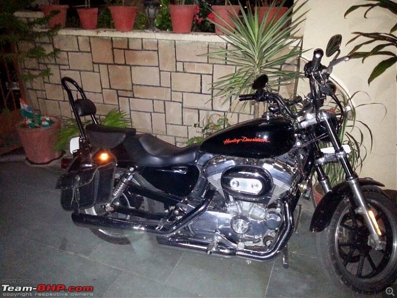 Harley Davidson Superlow XL883L - The Comprehensive Review-sissy-bar_1.jpg
