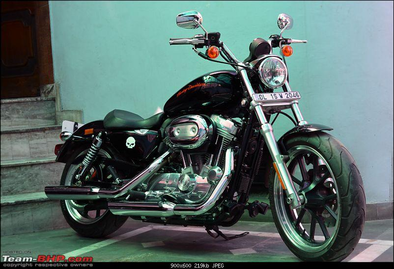 Harley Davidson Superlow XL883L - The Comprehensive Review-harley-without-pillion_2.jpg
