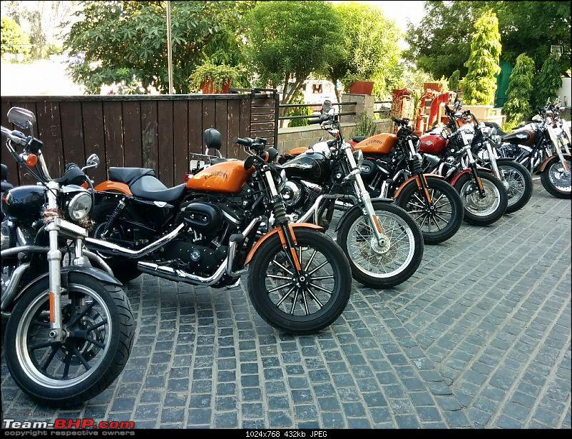 Harley Davidson Iron 883 - Beauty in the Beast-alwar-hotel.jpg
