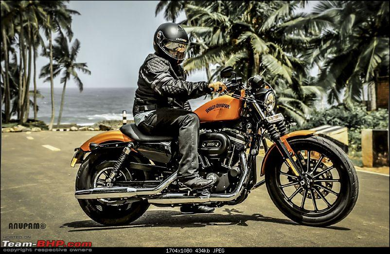 TheStig on two wheels! 2014 Amber Whiskey Harley Iron 883 comes home...-dsc_0132-large.jpg