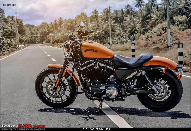 TheStig on two wheels! 2014 Amber Whiskey Harley Iron 883 comes home...-dsc_0141-large.jpg