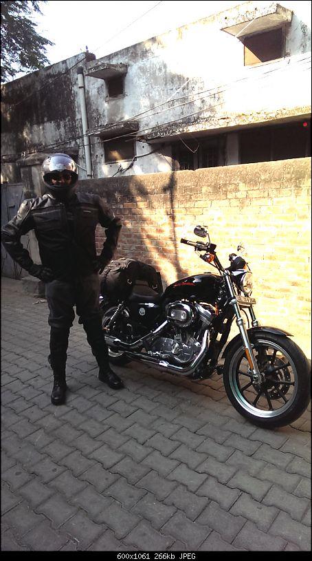 Harley Davidson Superlow XL883L - The Comprehensive Review-nhr-pushkar-79th-nov-2014_5.jpg