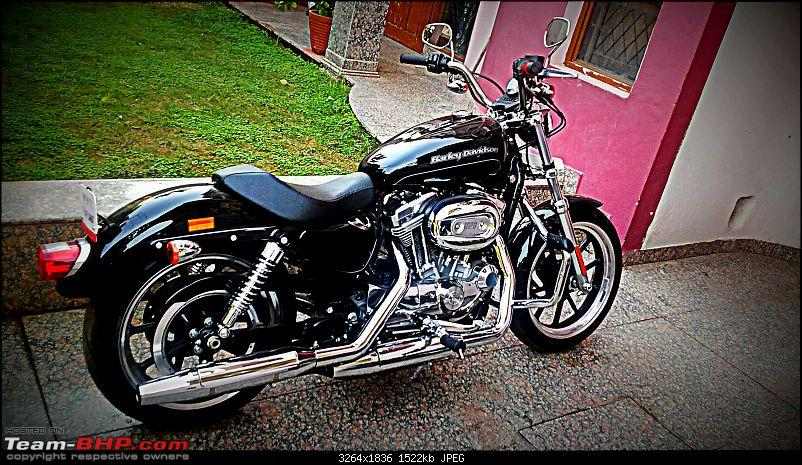 Black Scorpion comes home - My 2015 Harley Davidson Superlow-h07.jpg
