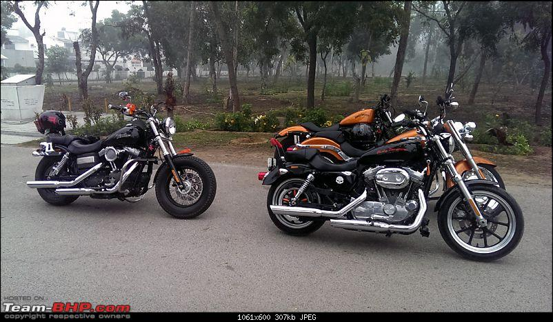Harley Davidson Superlow XL883L - The Comprehensive Review-bharatpur-ride-2426th-jan-2015_2.jpg