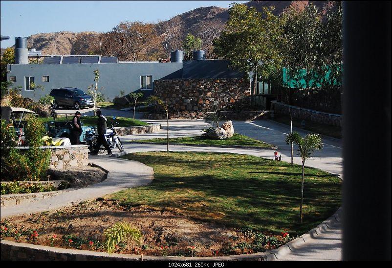 Triumph Bonneville - El Caballo Blanco rides home-bike-tatsaraasa.jpg