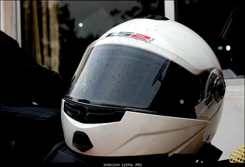 Triumph Bonneville - El Caballo Blanco rides home-helmet.jpg