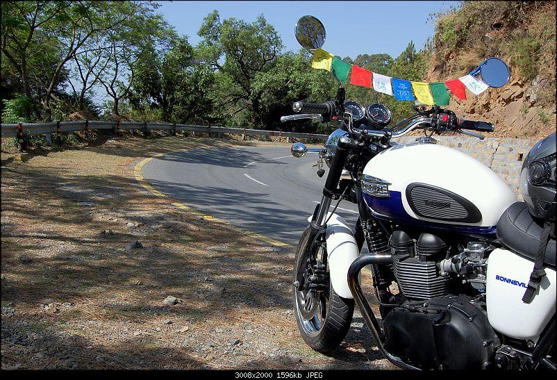 Triumph Bonneville - El Caballo Blanco rides home-twisties.jpg