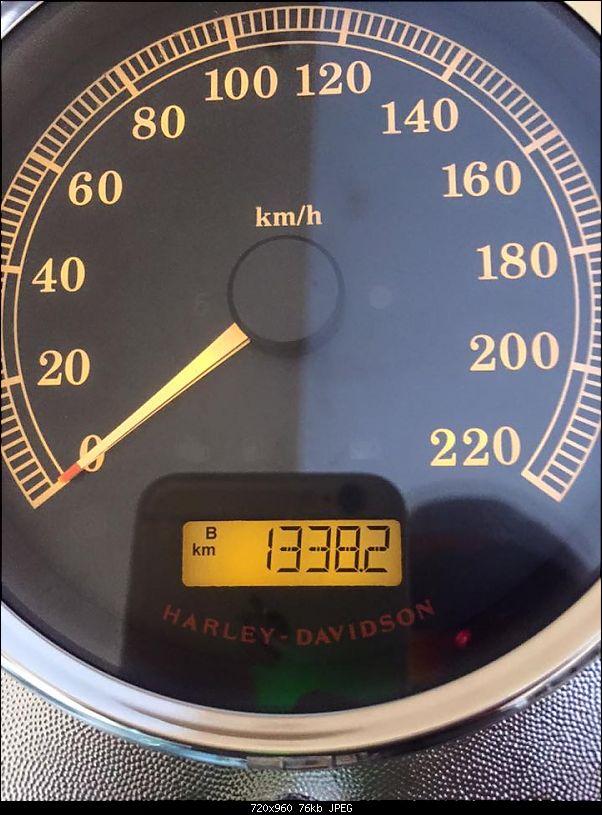 2015 Harley Davidson Fatboy - Rambo comes home!-11237574_10153443258462009_7879625346053497475_n.jpg