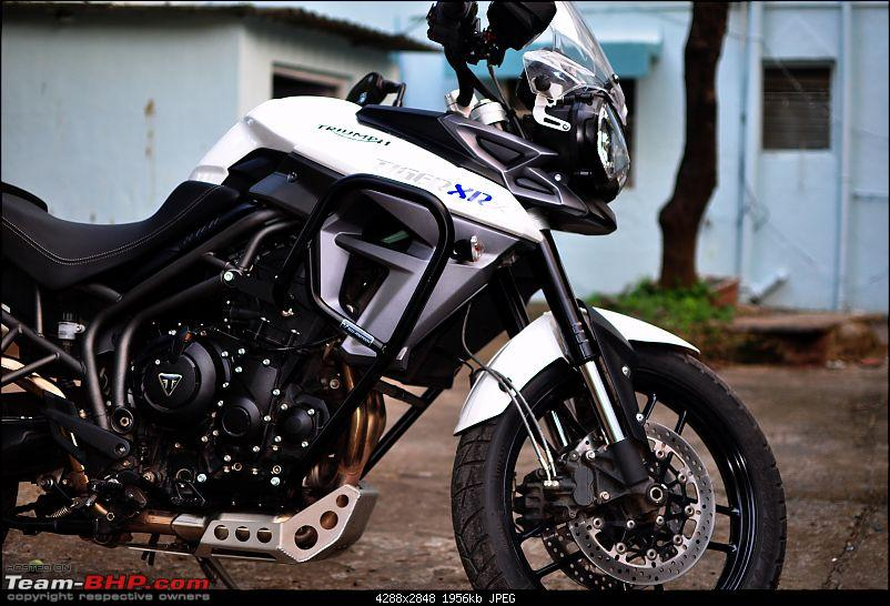 Triumph Tiger XRx : 6000 km ownership review!-side-profile-1.jpg