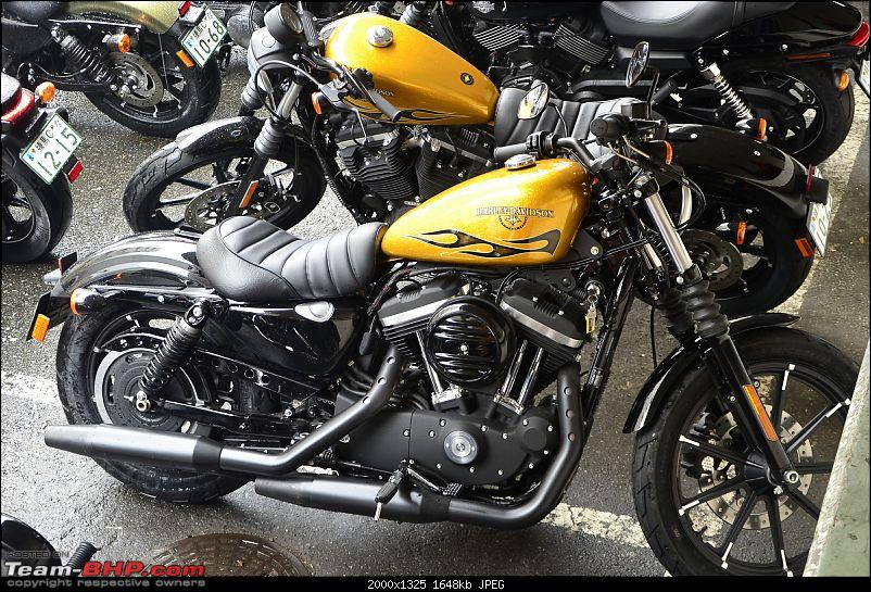Riding Harley-Davidsons in Japan - Street 750, Forty-Eight and Iron 883-_dsc2580.jpg