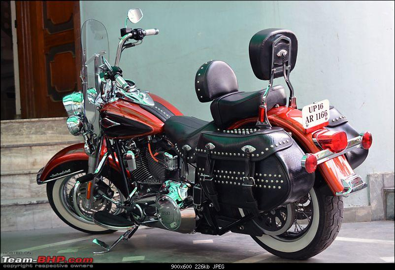 Harley-Davidson Heritage Softail Classic FLSTC: The Comprehensive Review-grasshopper-rider-backrest_2.jpg