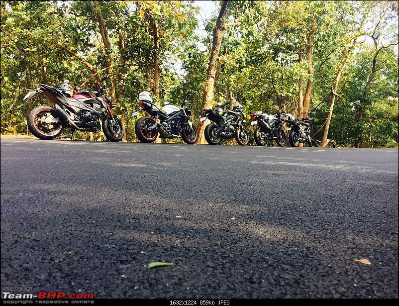 Kawasaki Versys 650:The good times with my 'Dark Knight' begin :Completes 20,000 kms !!!-jungle-lineup.jpg