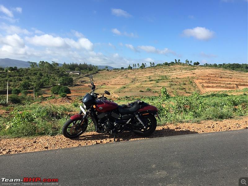 My Red Baron – Harley Davidson Street 750-file1.jpeg