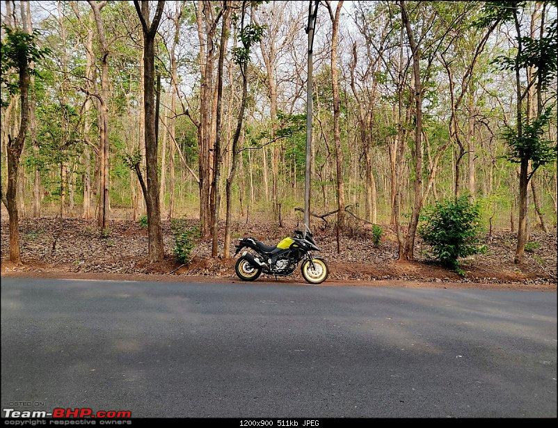 My Suzuki V-Strom 650. EDIT: 35,000 km up-vnh631.jpg