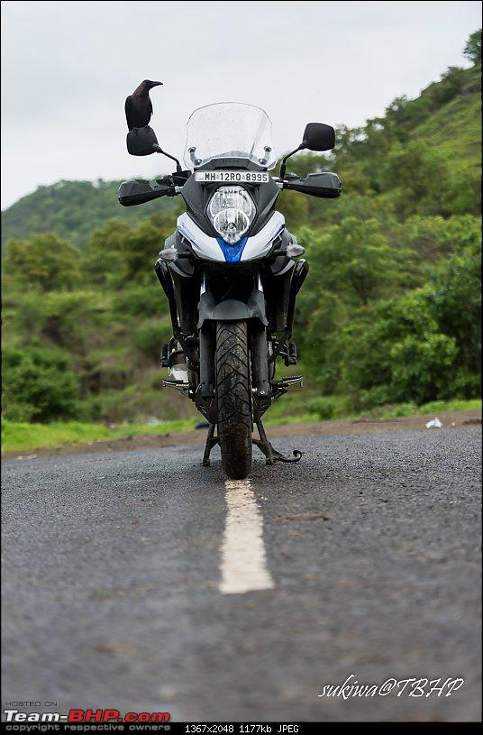 Suzuki V-Strom 650XT : Adventure bike done just right-_dsc6008.jpg