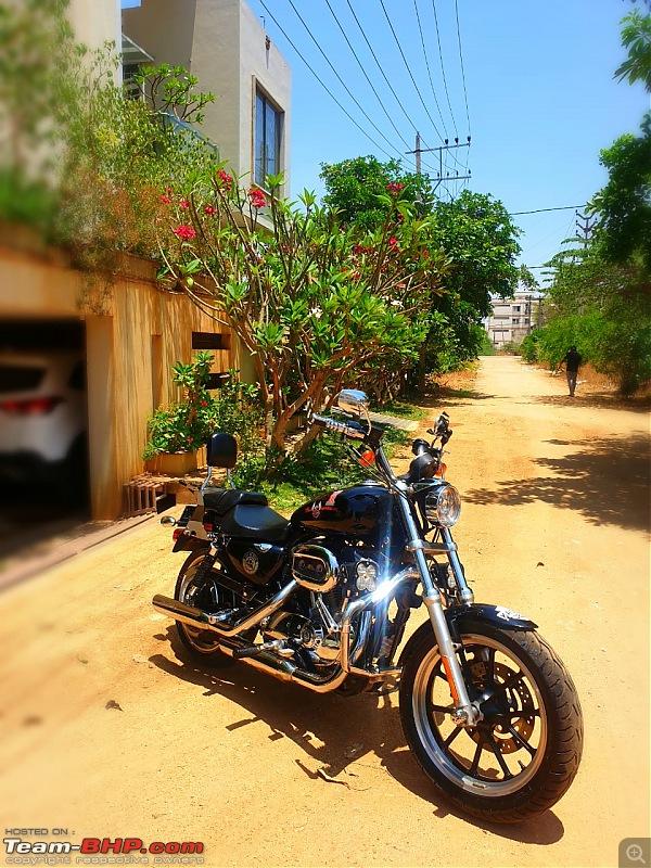 My pre-owned Harley Davidson Superlow XL883L-img20200413wa0052.jpg
