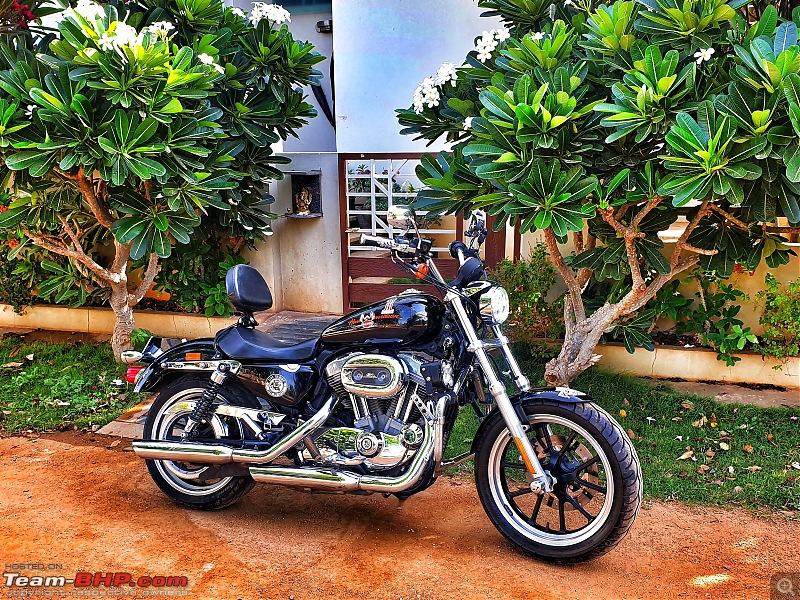 My pre-owned Harley Davidson Superlow XL883L-img_20200607_132328_323.jpg