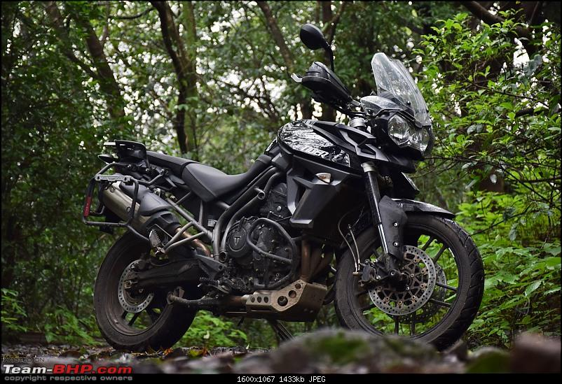 Dreams do come true : 2 years & 18000 kms with my Triumph Tiger 800 XR-dsc_0822.jpg