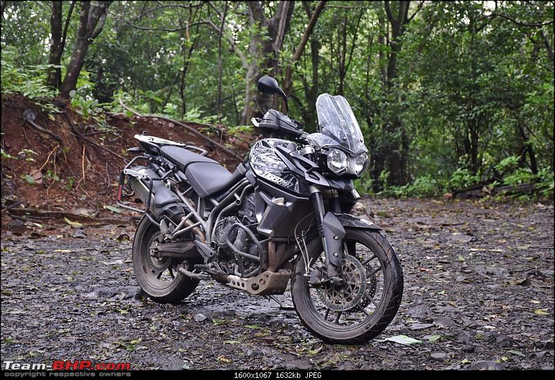 Dreams do come true : 2 years & 18000 kms with my Triumph Tiger 800 XR-dsc_0855.jpg