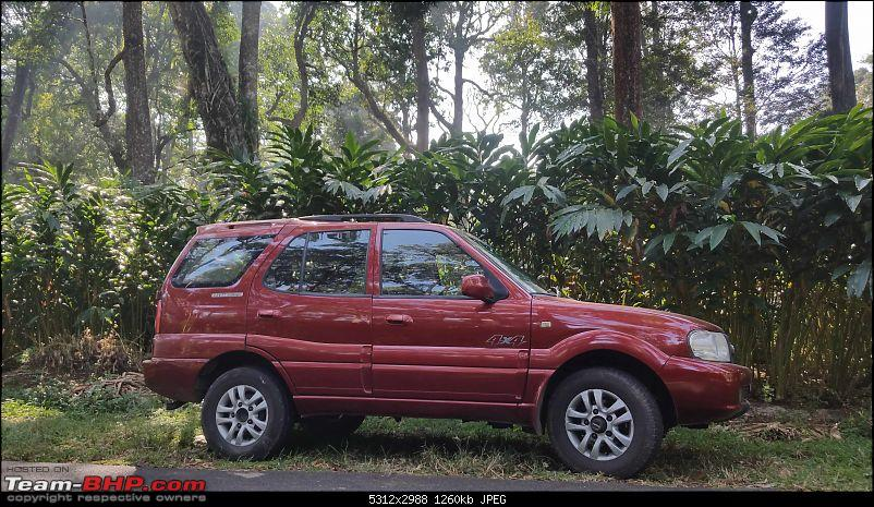 Buying a Used Tata Safari?-5.jpg
