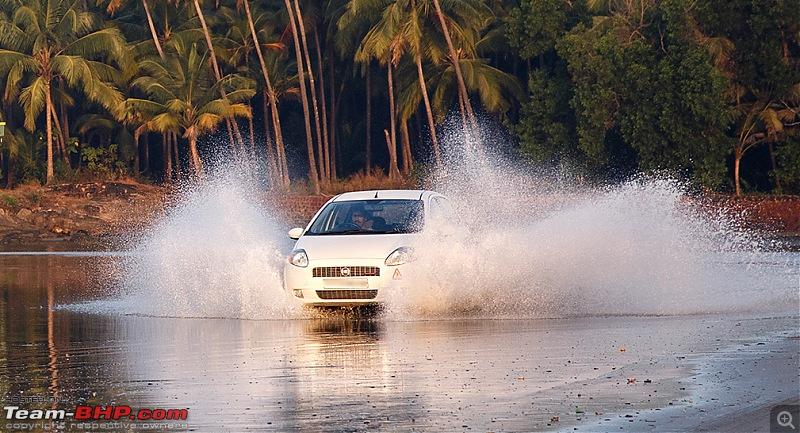 Feb 2014, Turf meets Surf! 10th Anniversary Drive Report-_dsm9563.jpg