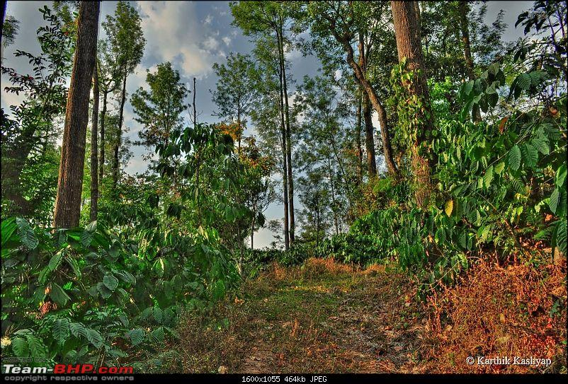 Chikmagalur: Cars, Coffee & TBHP Champs :)-dsc_0082_3_4_tonemapped.jpg