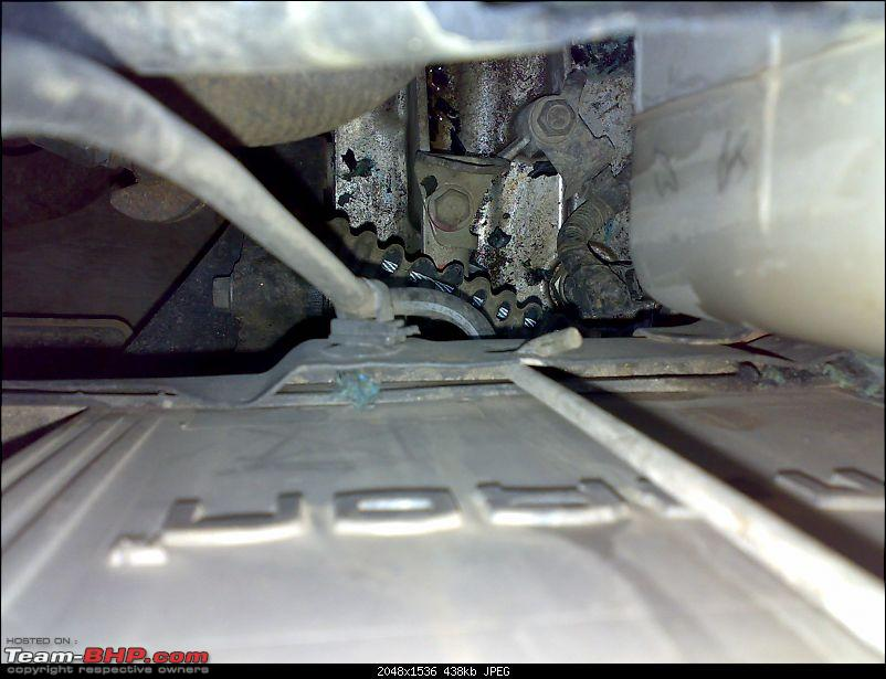How do you protect your car from rats?-22022009088.jpg