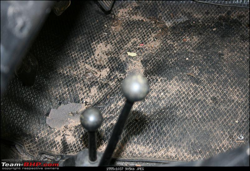 How do you protect your car from rats?-img_9292.jpg