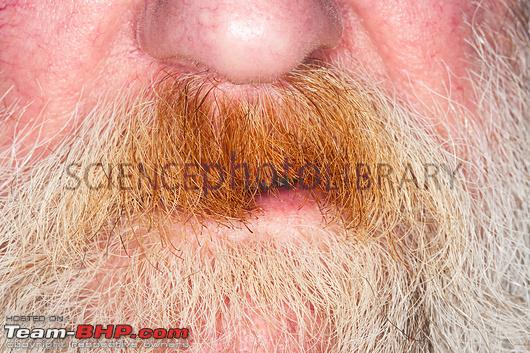 Name:  C0197899Smoker_s_stained_moustacheSPL.jpg