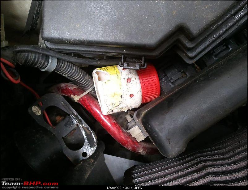 How do you protect your car from rats?-20120909-12.46.39-custom.jpg